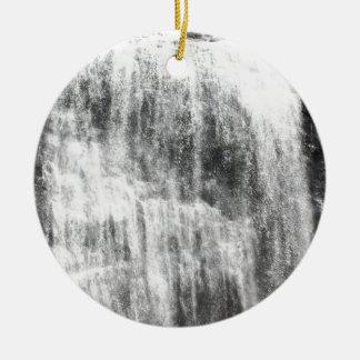 Persecución de las cascadas ornamente de reyes