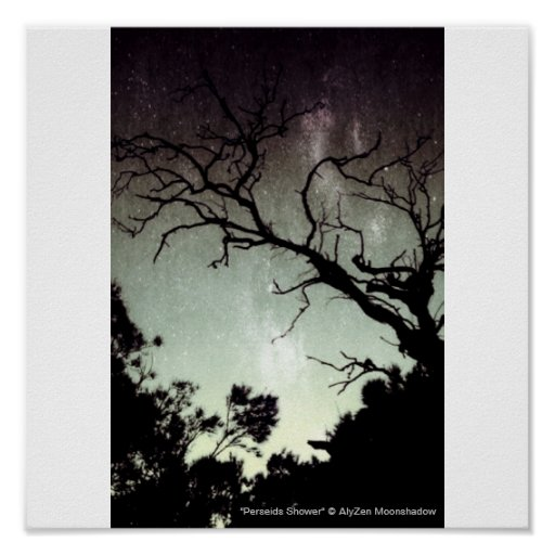 Perseids Shower Small Poster