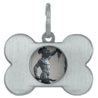 Perseus con el jefe de la medusa placas de nombre de mascota