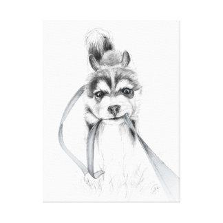 Perseverance, A Siberian Husky Canvas Print