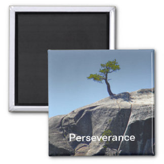 Perseverance ~ Magnet