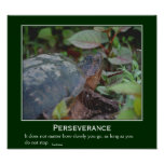 Perseverance Turtle Motivational Poster