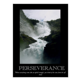 Perseverance Waterfall Motivational Poster