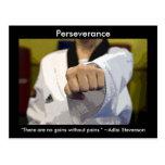 Perseverencia de los artes marciales tarjeta postal