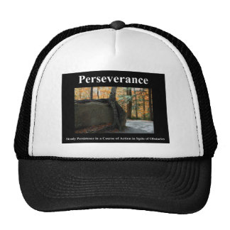 Perseverencia Gorros Bordados