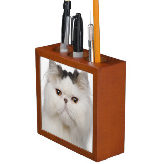 Persian (10 months old) sitting pencil holder