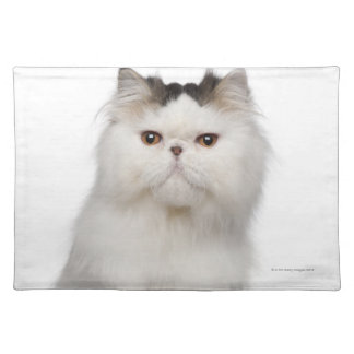 Persian (10 months old) sitting placemat