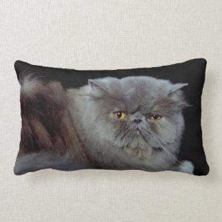 Persian Blue Pillows