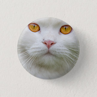 Persian Cat Badges Button