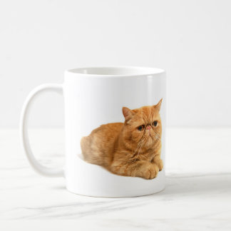 Persian cat basic white mug