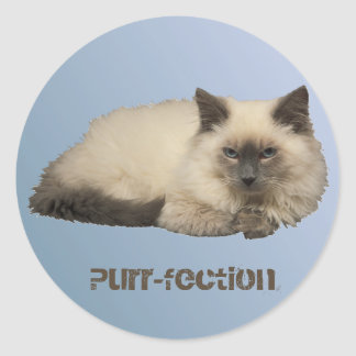 Persian Cat Classic Round Sticker