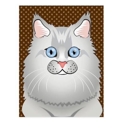 Persian Cat (Doll-Face) Cartoon Post Cards