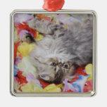 Persian Cat, Felis catus, Brown Tabby, Kitten, 2 Square Metal Christmas Ornament
