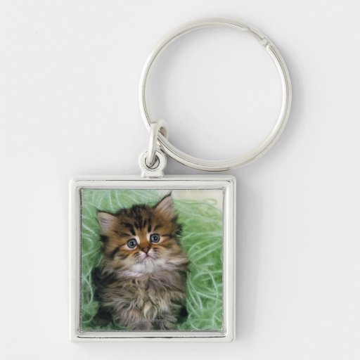 Persian cat; is one of the oldest breeds of cat. Silver-Colored square keychain