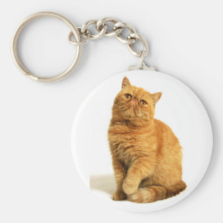 Persian cat keychain