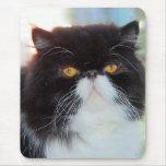 Persian Cat Mousepad