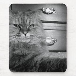 Persian Cat MP Mouse Pad
