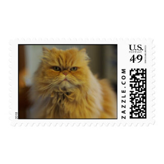 Persian Cat Postage Stamps