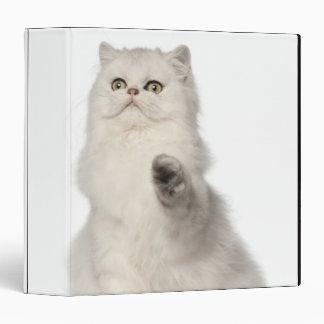 Persian cat sitting binder