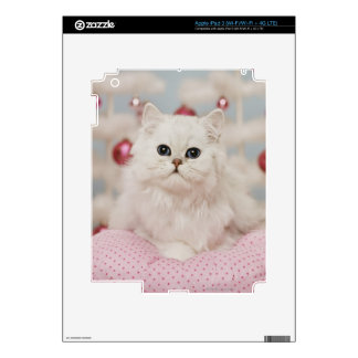 Persian cat sitting on pink pillow decals for iPad 3