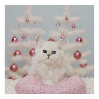 Persian cat sitting on pink pillow wood wall art