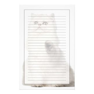 Persian cat sitting stationery
