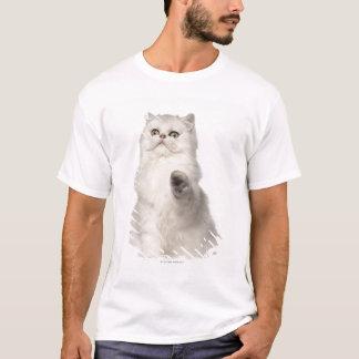 Persian cat sitting T-Shirt