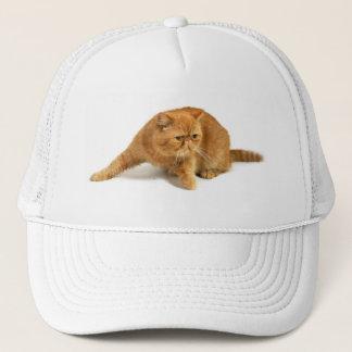 Persian cat trucker hat