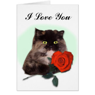 Persian Cat with Red Rose Card