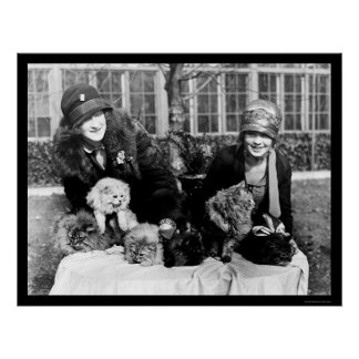 Persian Cats and American Ladies 1924 Poster