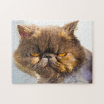 Persian Cats. Jigsaw Puzzle