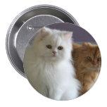 PERSIAN CATS PINS