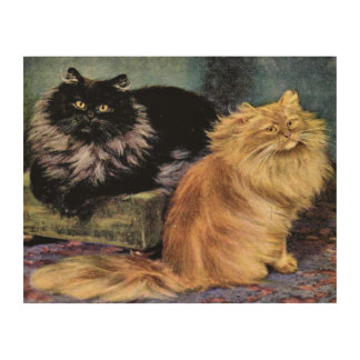 Persian cat wall art