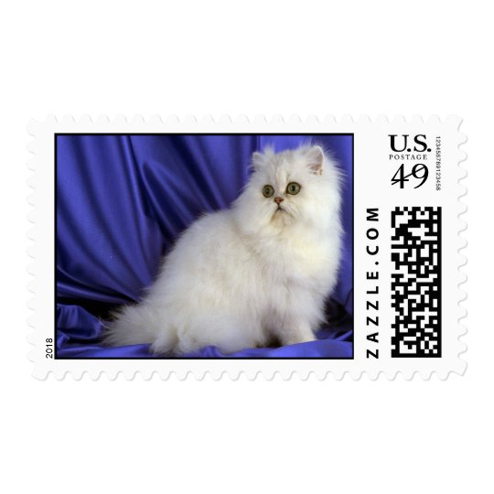 Persian, chinchilla postage