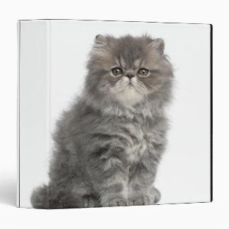 Persian Kitten (2 months old) sitting 3 Ring Binder