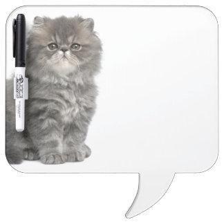 Persian Kitten (2 months old) sitting Dry-Erase Whiteboard