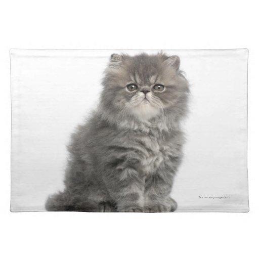 Persian Kitten (2 months old) sitting Place Mat
