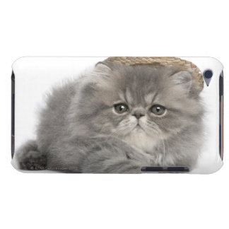 Persian Kitten (2 months old) wearing a straw iPod Touch Case