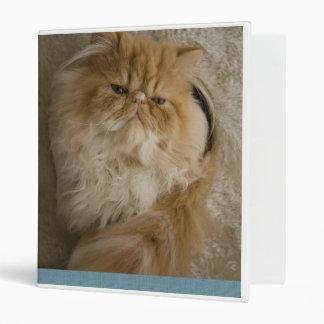 Persian Kitten 3 Ring Binder