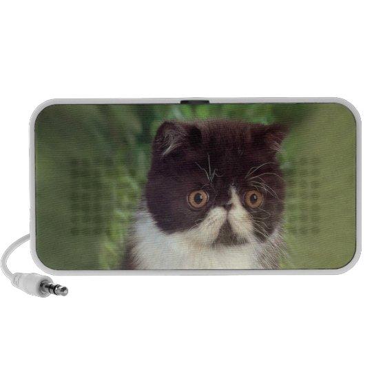 Persian Kitten Black and White Doodle Mini Speaker