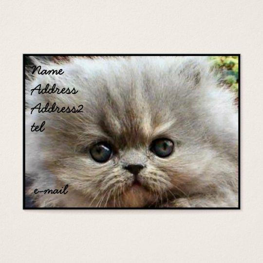 Persian kitten business card Large