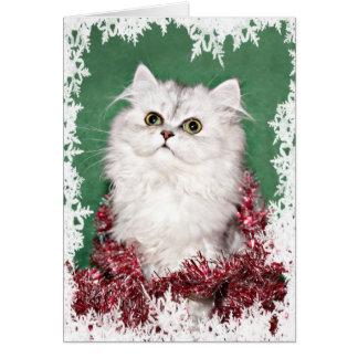 Persian kitten Christmas Card