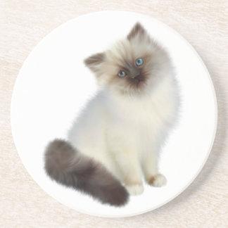 Persian Kitten Drink Coaster