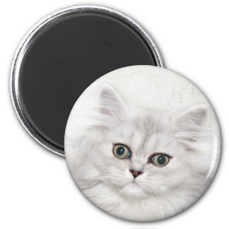Persian kitten face 2 inch round magnet