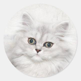 Persian kitten face classic round sticker