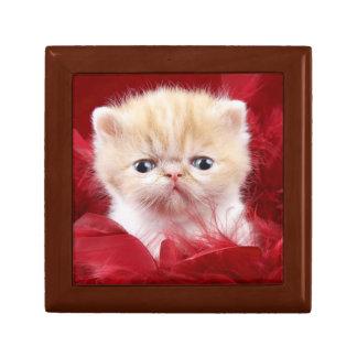 Persian Kitten Jewelry Box