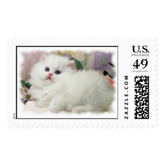 Persian Kitten Postage Stamp