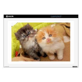 "Persian Kittens; Hug Me Please! 17"" Laptop Decal"