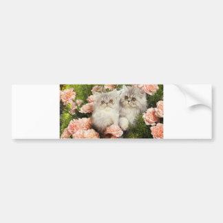 Persian Kittens Play in Pink Flowers Bumper Sticker