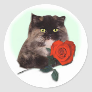 Persian Kitty with Rose Classic Round Sticker
